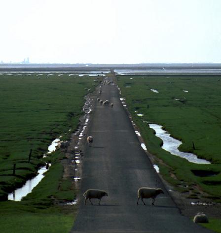 Остров Манне