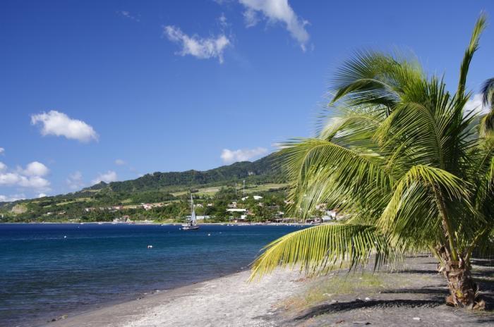 Мартиника TO5T