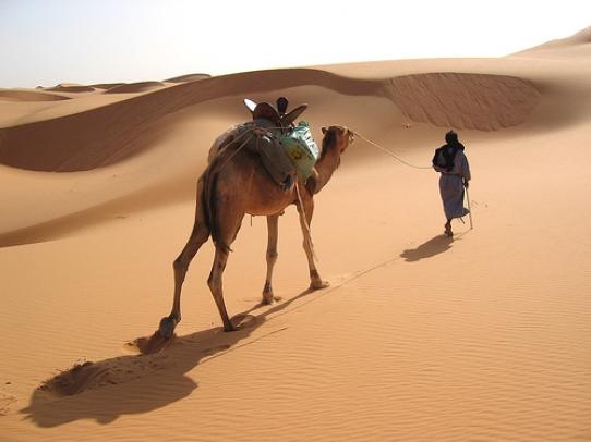 Мавритания 5T0SP