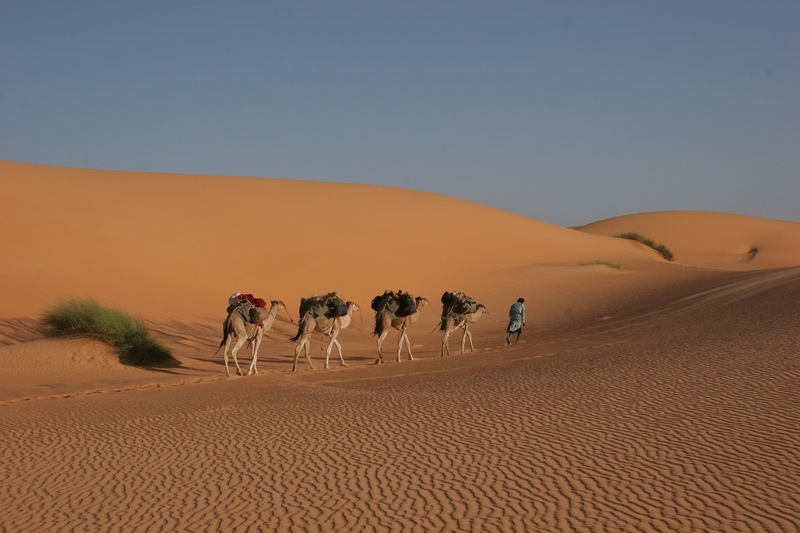 Mauritania DX News 5T0JL