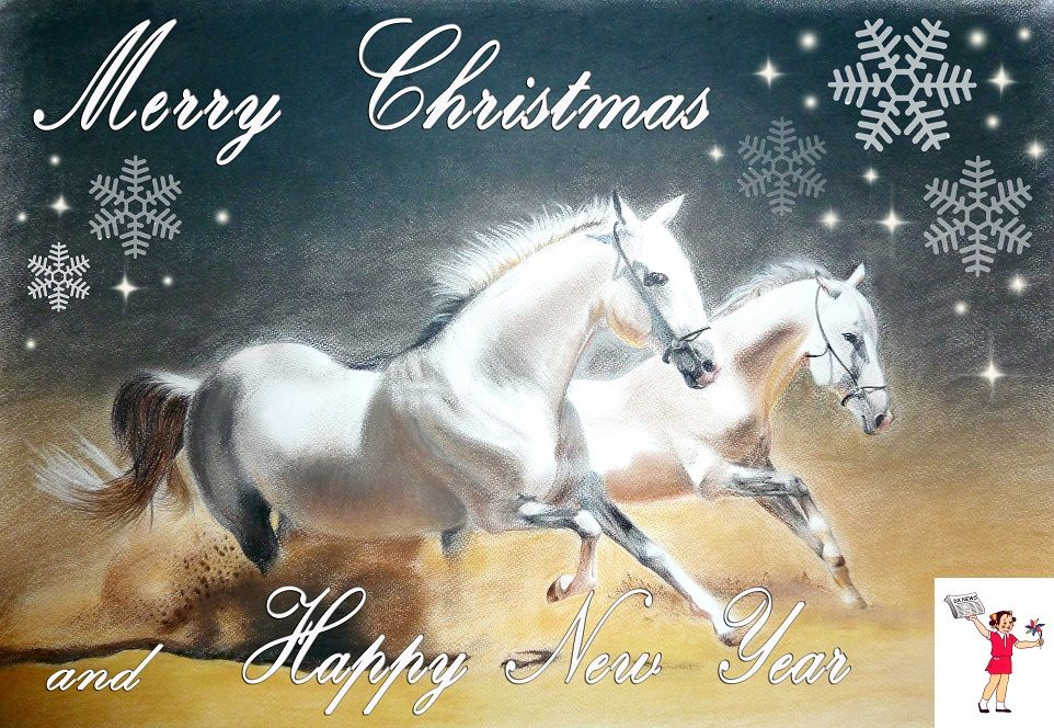 Merry XMAS Happy New Year 2014
