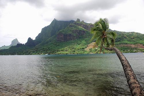 Остров Муреа Французская Полинезия  FO/K8AQM Бухта Капитана Кука