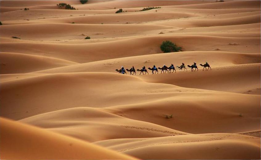 Morocco 5D5A WPX SSB Contest 2012 DX News