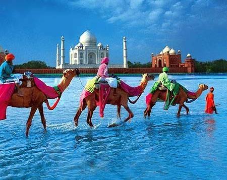 Марокко Переправа Верблюды CN3A