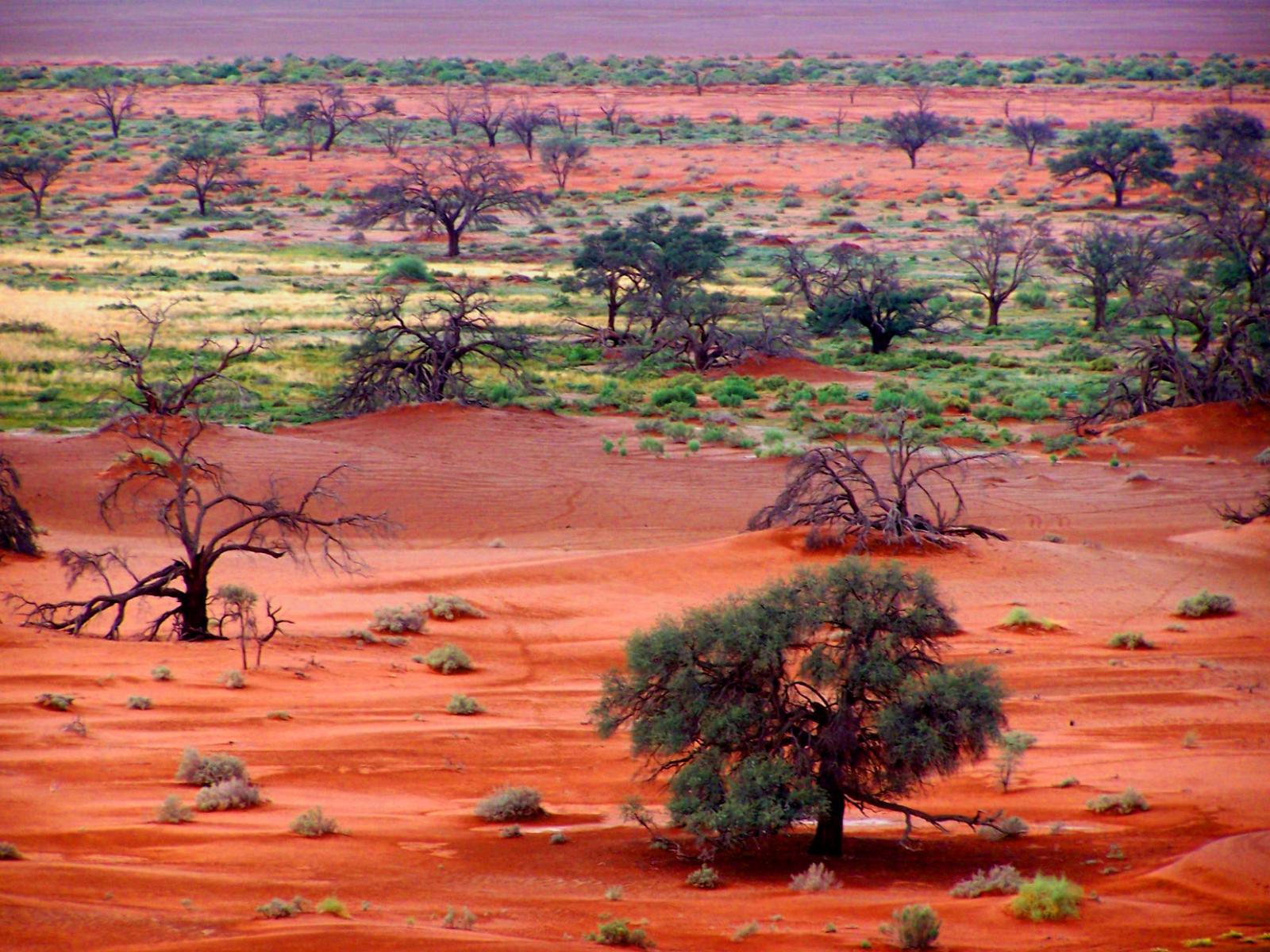 Намибия DX Новости V5/DJ4SO 2011