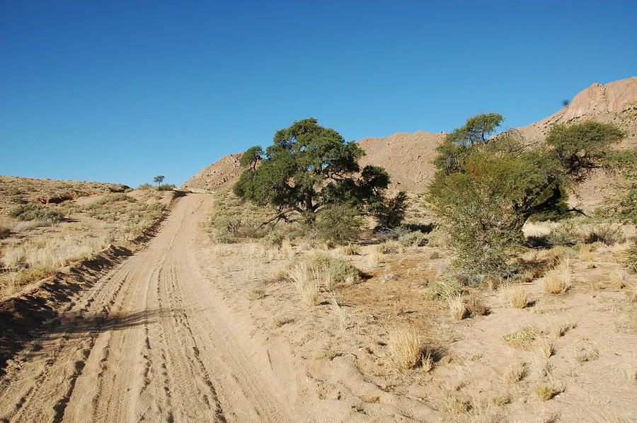 Namibia DX News V55DLH