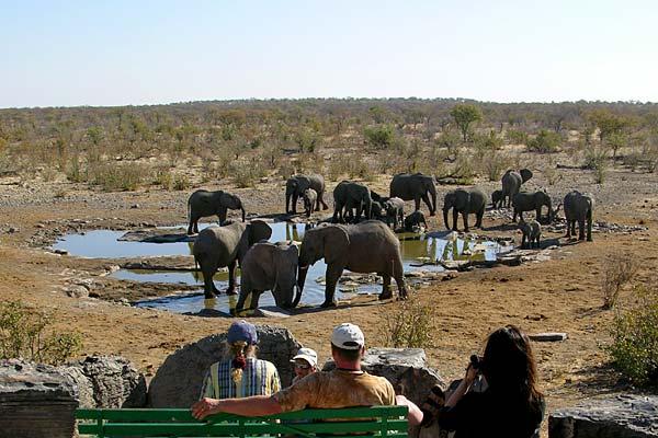 Намибия V5/DK2WH Слоны на водопое