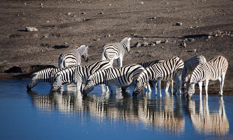 Namibia V5/DL1ZU