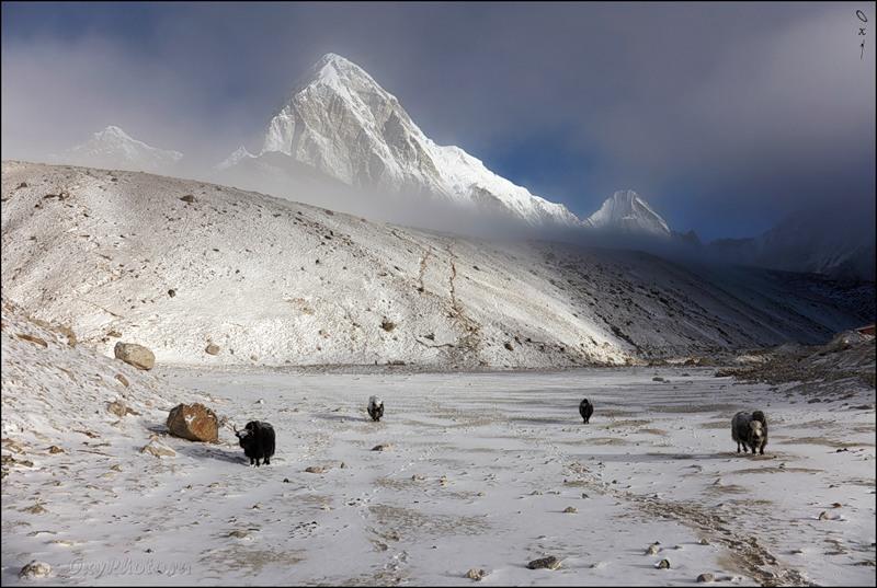 Непал 9N7MD DX Новости