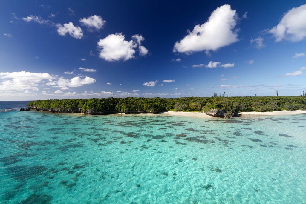 New Caledonia FK8RO DX News
