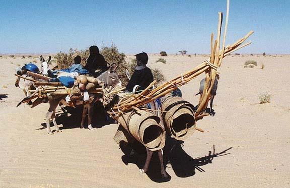 Niger 5U6E 5U8NK DX News