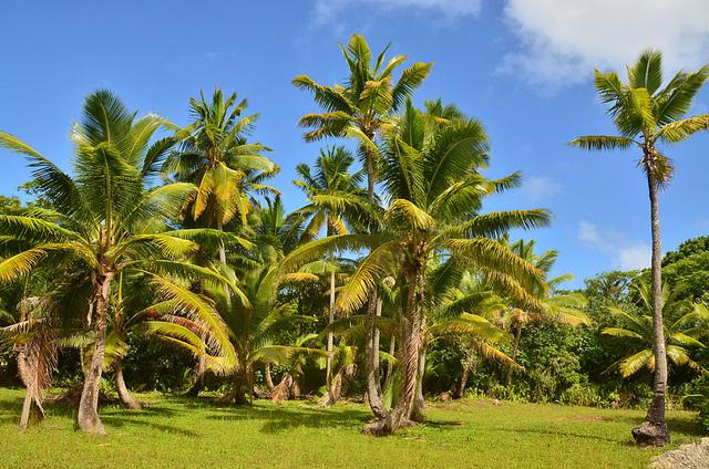 Остров Ниуэ E6AK E6AY E6AA