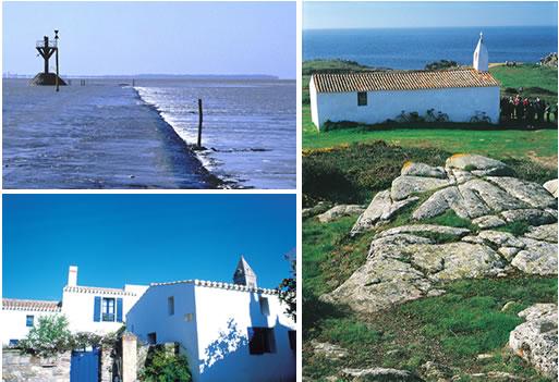 Noirmoutier Island TM7C
