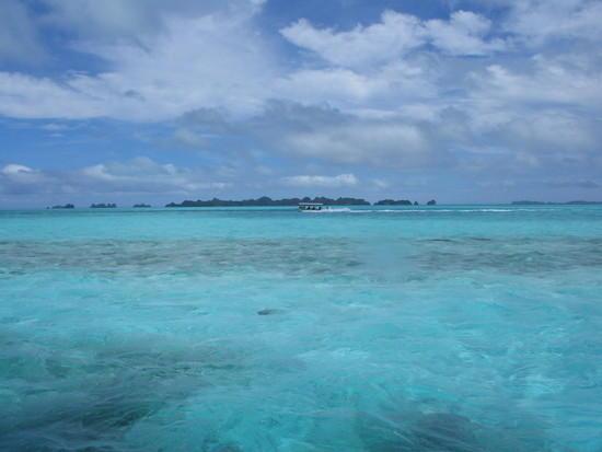 Palau Islands DX News T88ME