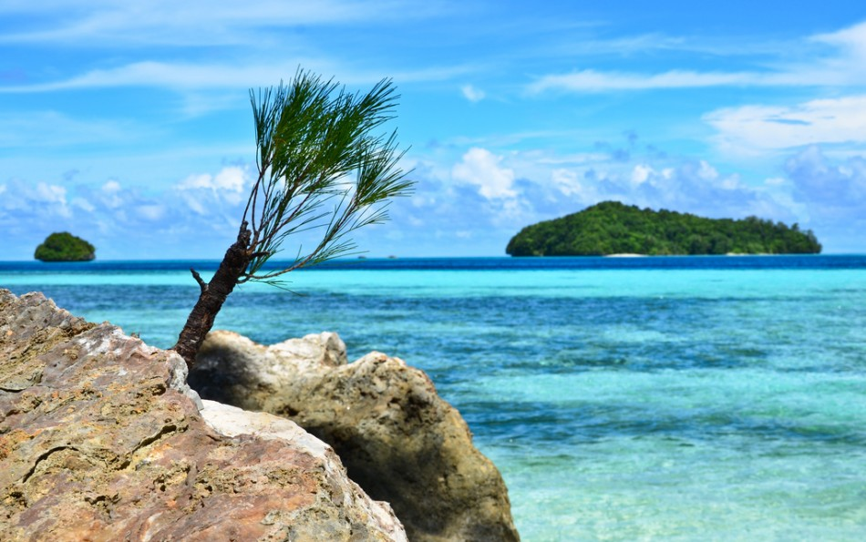 Palau Islands T88RF