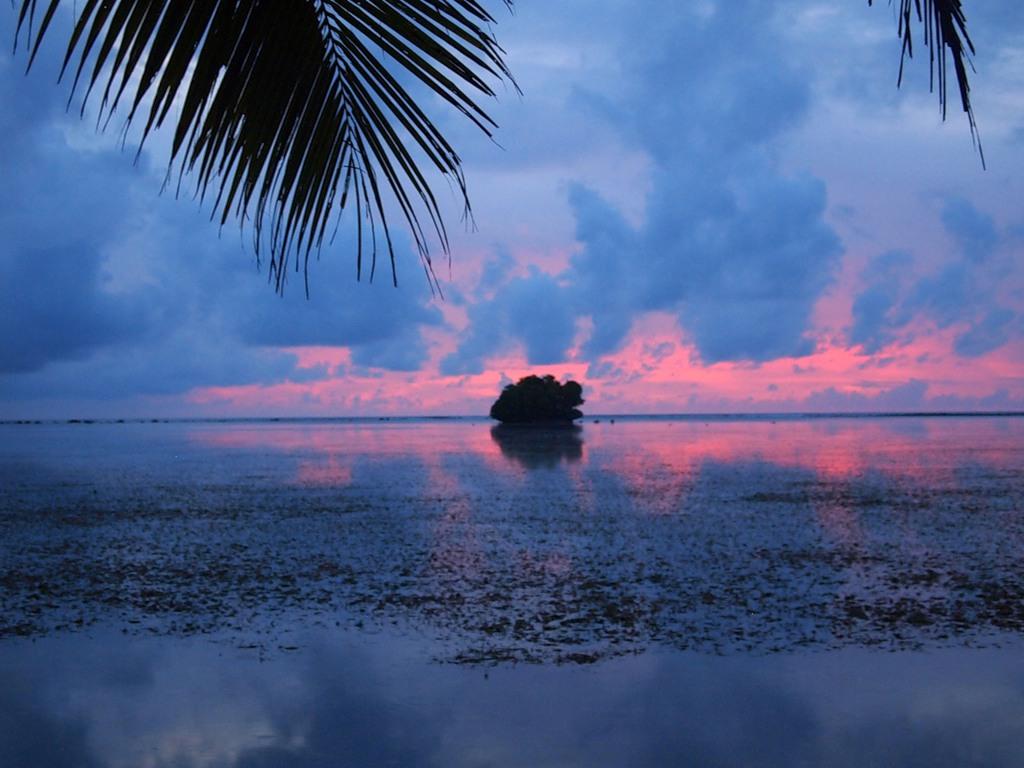 Palau T88AT DX News