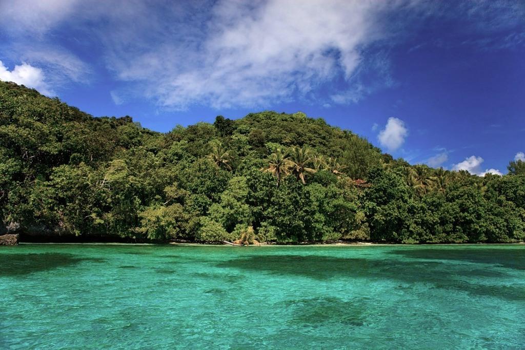 Palau T88AZ DX News