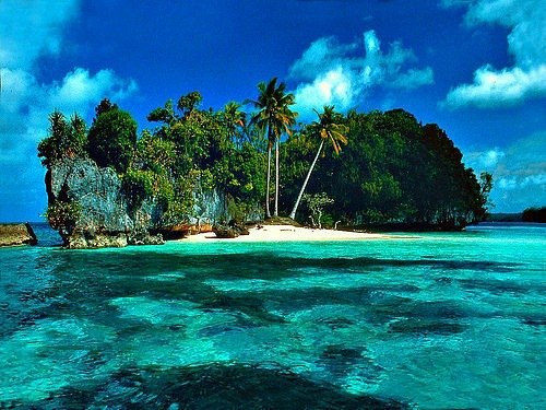 Palau T88IK DX News