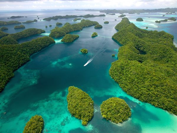 Palau T88XH DX News