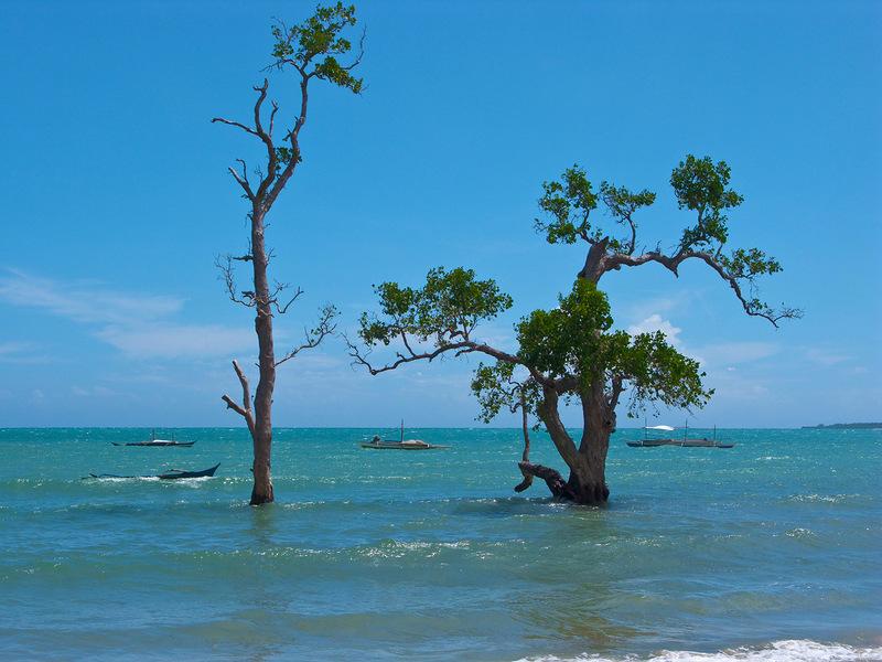 Palawan Island DU1/K6ZRH DX News