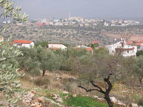 Palestine E40VB DX News