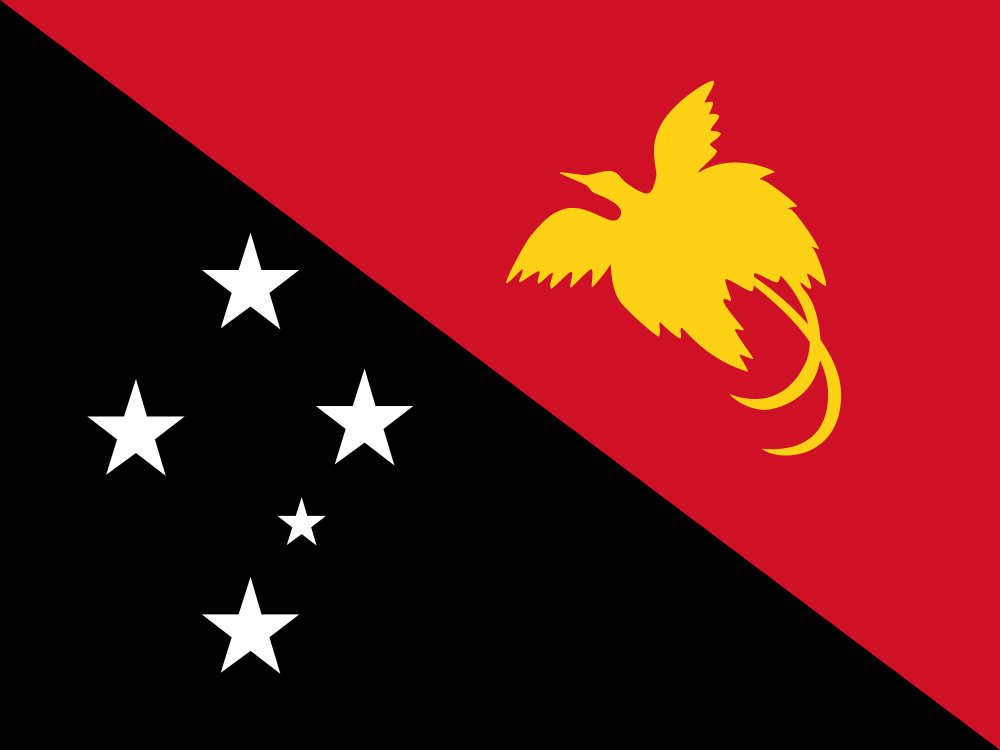 Papua New Guinea Flag of Papua New Guinea P29FR