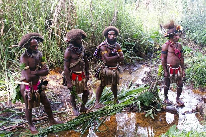 Papua New Guinea P29LL DX News