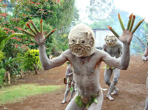 Папуа Новая Гвинея P29VAC
