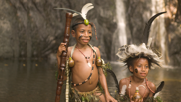 Папуа Новая Гвинея P29VLR