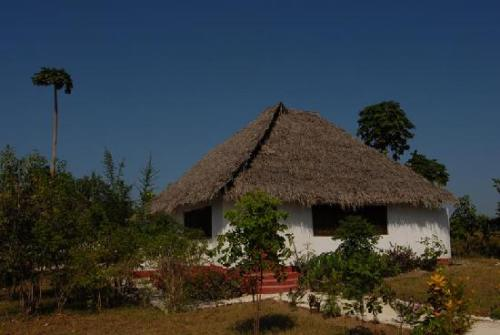 Pemba Island 5H1DX DX News
