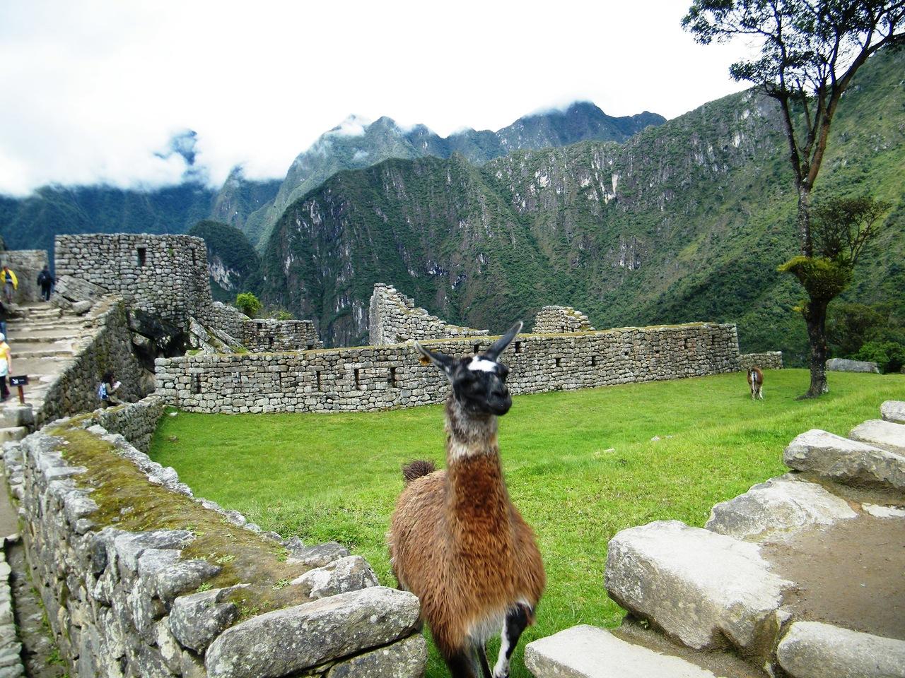 Peru OA1/DL1CW DX News