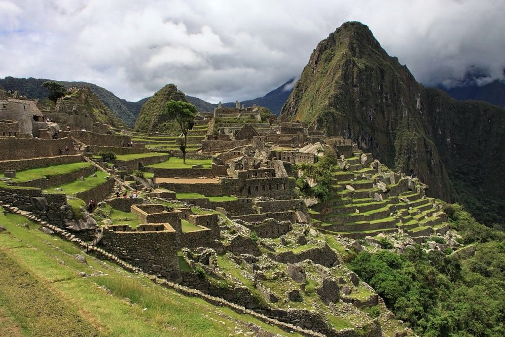 Перу OA4/NK0S