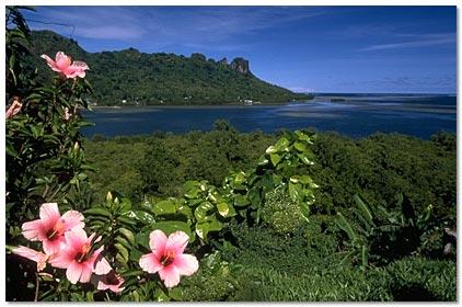 Pohnpei Island Micronesia DX News
