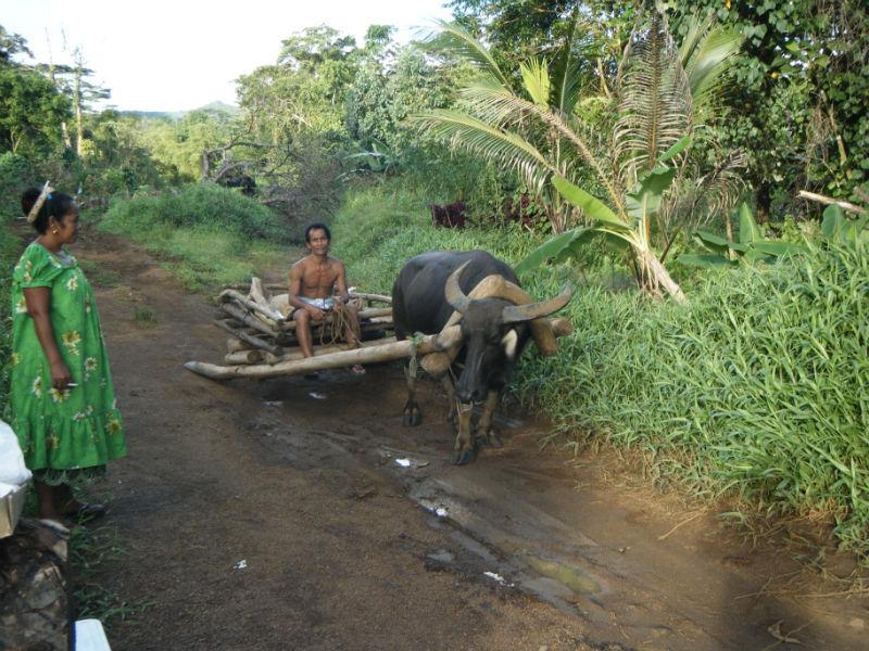 Остров Понпеи Микронезия V63KZ V63MP