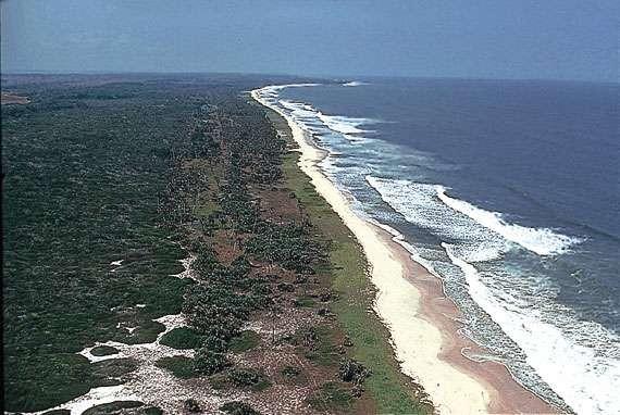 Pointe Noire Congo TN2T