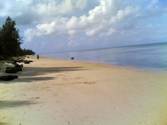 Polillo Island DZ1P