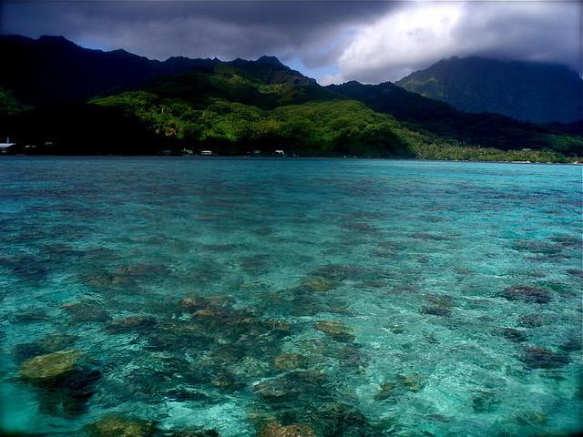 Остров Раиатеа Французская Полинезия FO/F6BCW