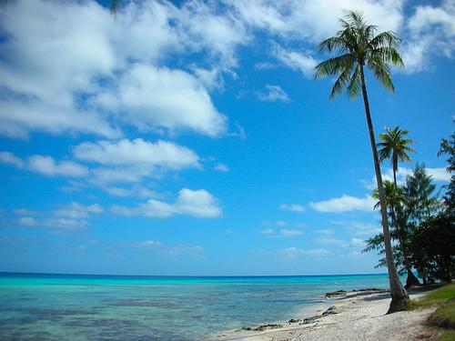 Rangiroa Island French Polynesia FO/F6CTL