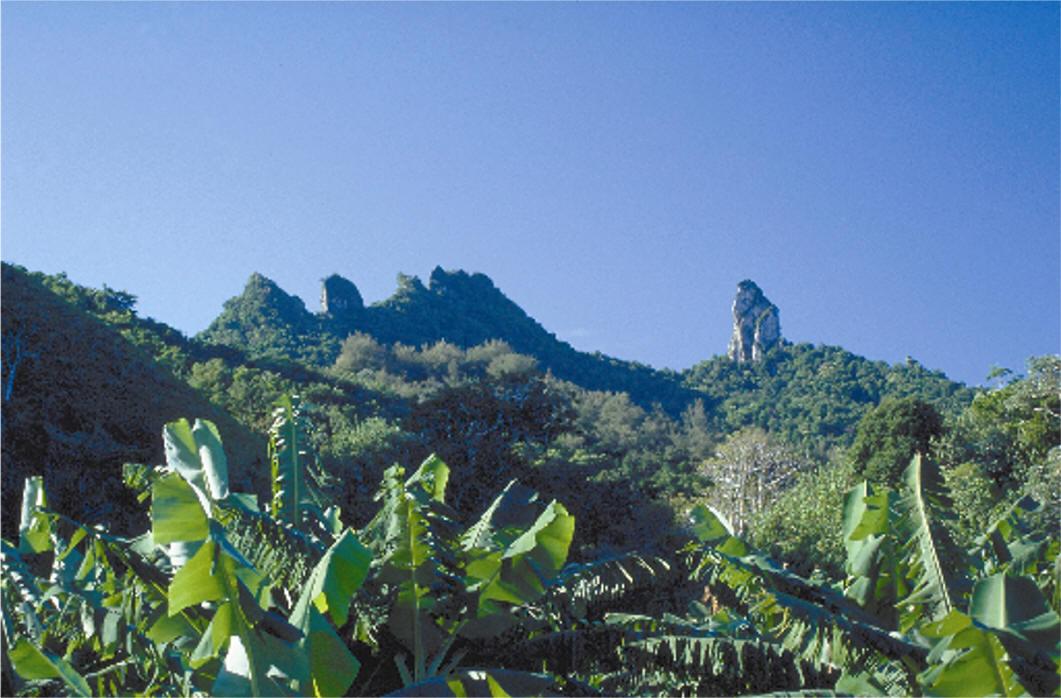Rarotonga Island E51CGJ