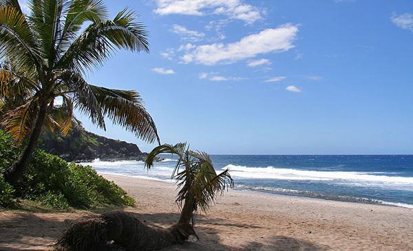 Reunion Island FR/DJ7RJ 2012 DX News