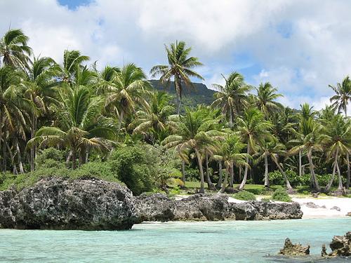 Остров Рота KH0PR Кокосовые Пальмы Марианские Острова