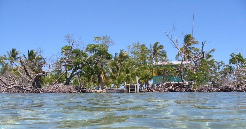 Round Cay Island V31DT V31AB Belize DX News