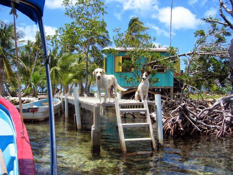 Round Cay Island Belize V31DT V31AB QTH