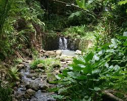 Saint Lucia Island DX News J6/K8EAB