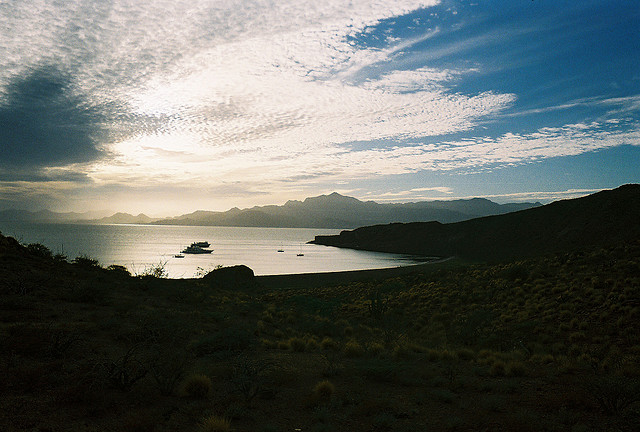 Остров Сан Франциско XF1F DX Новости