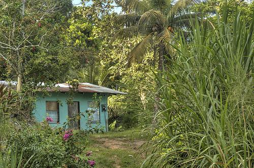 Сейшельские Острова S79DB