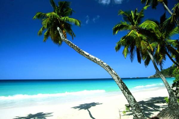 Seychelles Islands S79VJG DX News