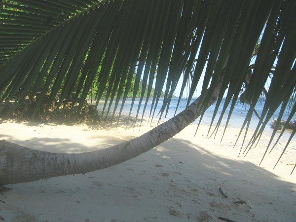 Solomon Islands H40FN H40FK
