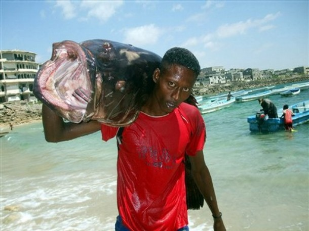 Somalia 6O0DX Fish and Fishman