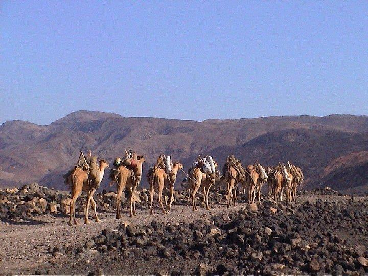 Somalia 6O0DX
